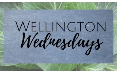 Wellingtons Return!!
